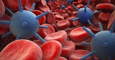 Volo radente sull'apocalisse: l'uomo e il virus