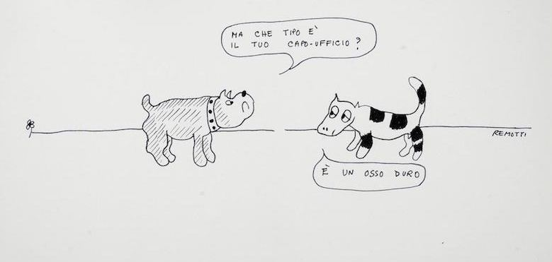 remotti cani