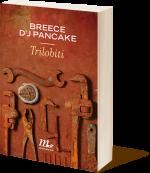 pancake_3d_tn_150_173