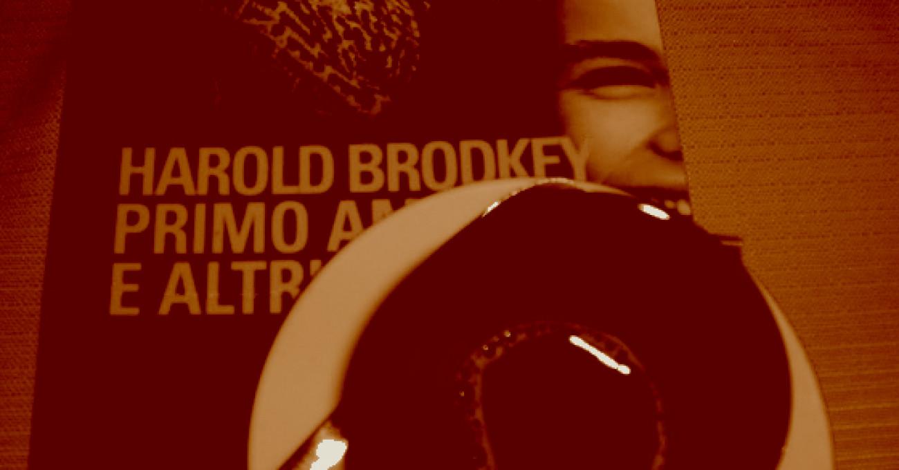 Su  «Primo amore e altri affanni» di Harold Brodkey