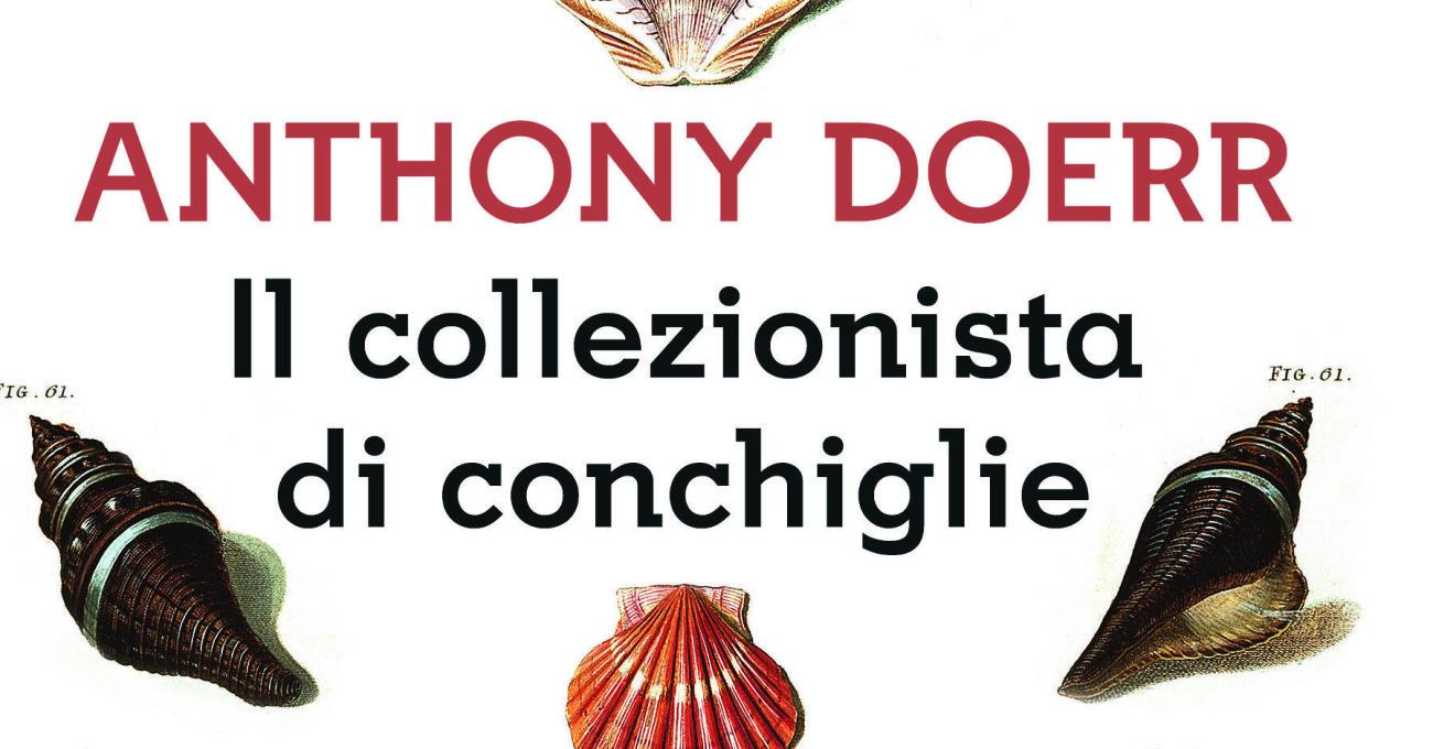 «Il collezionista di conchiglie» di Anthony Doerr