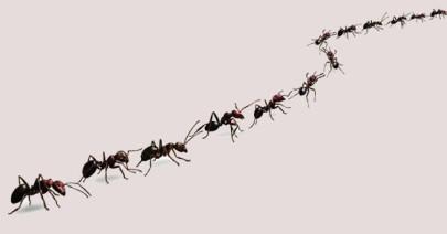 «L'impero delle formiche» di H.G. Wells