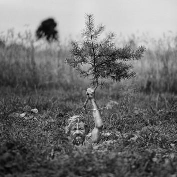 Adam Panczuk, «Untitled», Karczeby