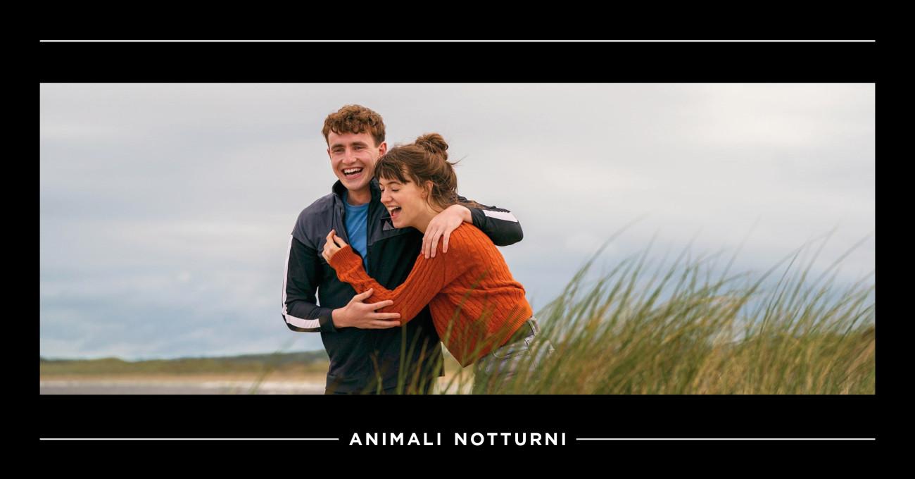 Dalla pagina allo schermo: Normal People di Sally Rooney